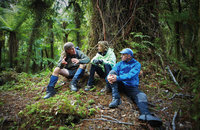Guided Hollyford Track