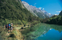 Stunning views on the Milford Track